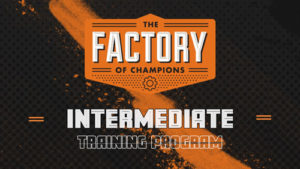 Intermediate Online Basketball Training